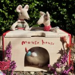 Mouse house – the search is on!