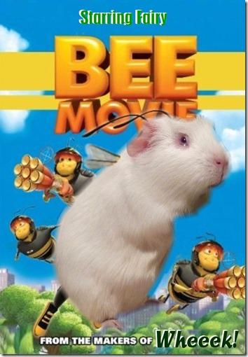 Fairy Bee DVD