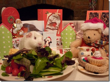Lunch for Fairy and Mr Bear Xmas Day Best
