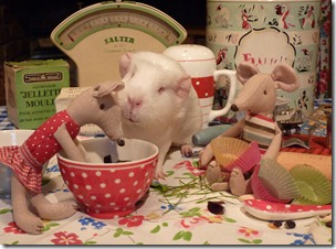 Minty and Monty join Fairy for baking day (15)