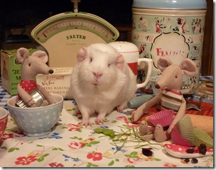 Minty and Monty join Fairy for baking day (18)