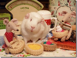 Minty and Monty join Fairy for baking day (23)