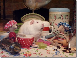 Minty and Monty join Fairy for baking day (5)
