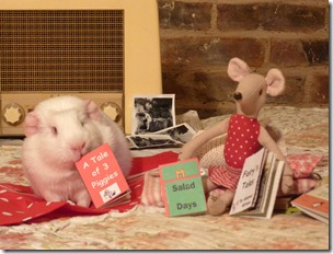 Miss Mouse and Fairy listening to the radio and reading (6)