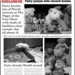 Fairy Wins!
