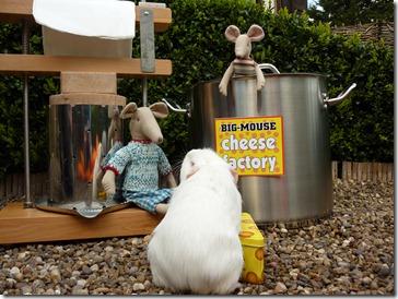 A job at the cheese facatory  (4)