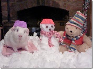 Fairy and Mr Bear build their snowman (2)