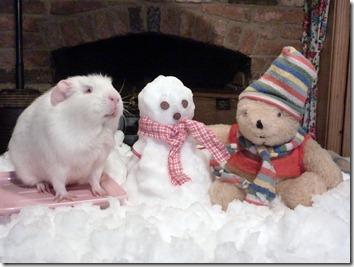Fairy and Mr Bear build their snowman (5)