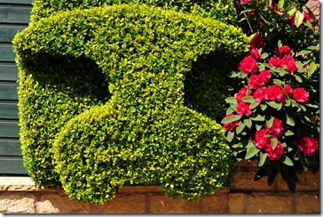 Hedge carvings (1)