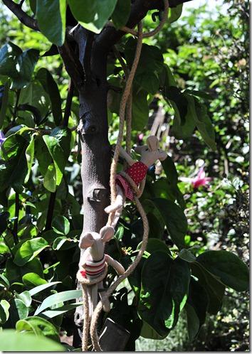 Tree climb (1)