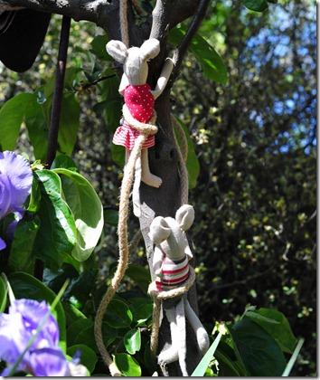 Tree climb (3)