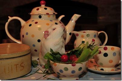 Fairy takes tea! (63)