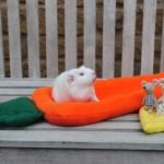 Fairy, The Carroty-Comfort-Cushion and the Cheese-Chair Episode!