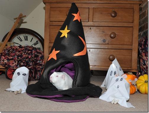 Halloween Fairy (6)