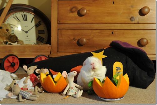 Halloween treats (4)