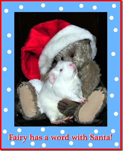 Fairy and Santa